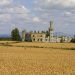 Duckett's Grove - Photo by Tom Donagher