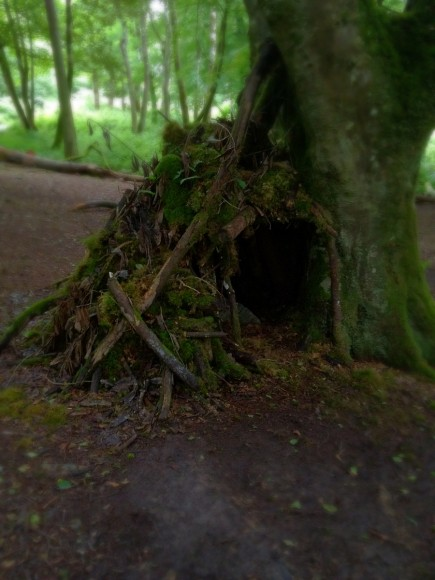 Knockma Wood Fairy Fort - Photo by Corey Taratuta