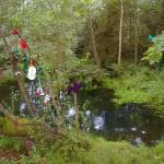 St Berrihard's Well, Co Tipperary